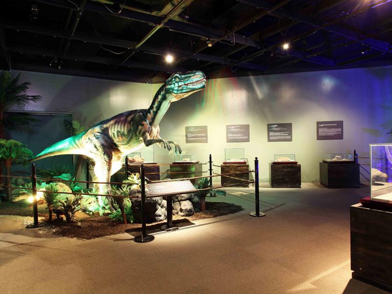 【動く・叫ぶ】メトリアカントサウルス