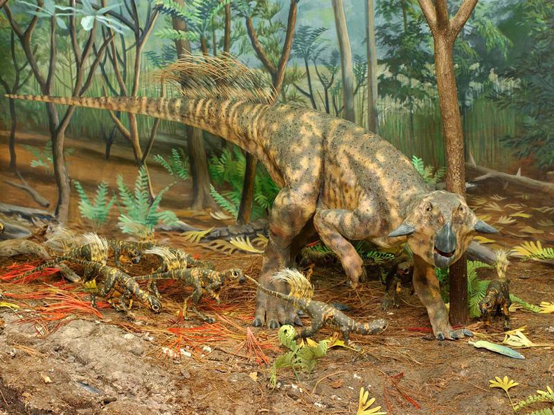 【動く・叫ぶ】プシッタコサウルス
