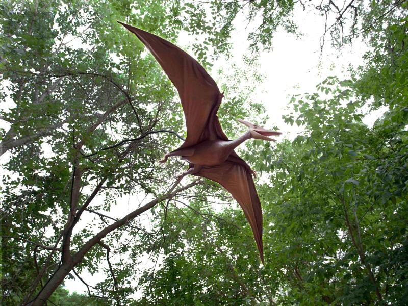 【動く・叫ぶ】翼竜