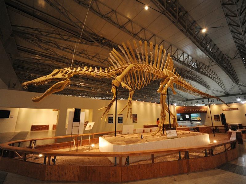【化石】スピノサウルス