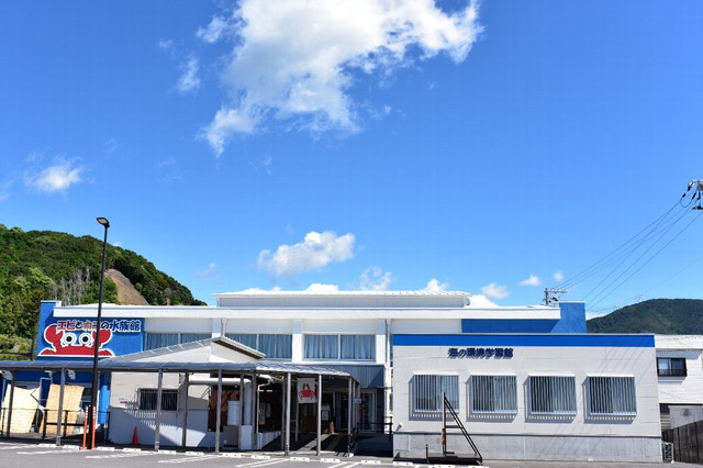 すさみ町立エビとカニの水族館様【和歌山】_ホラーハウスパッケージ